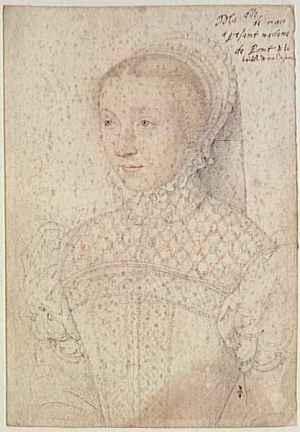 Portrait de Marie de Montchenu, demoiselle de Macy, dame d'Harcourt.<br /> François Clouet, 1547, Musée Condé, Château de Chantilly